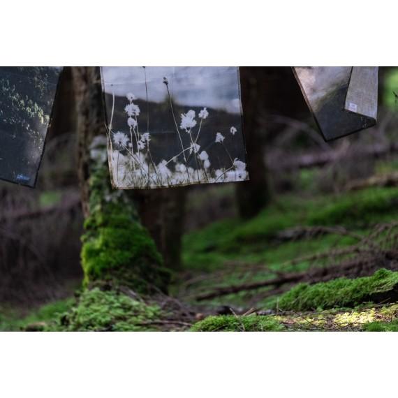 Kopphandkle Myrull